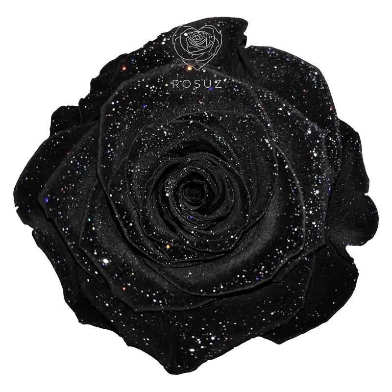 Longlife Roos Black Dust
